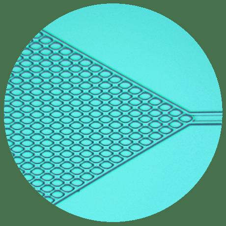 Example of microfluidics device