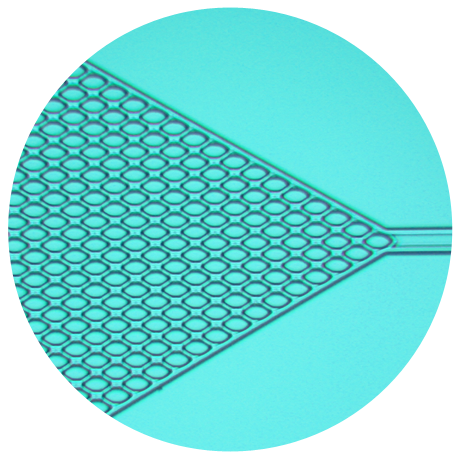 La microfluidique