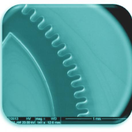 Microwheel 1