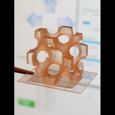 Exemple de biotechnologie 3D : microélément
