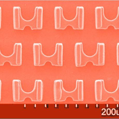 Exemple de biotechnologie 3D : patchenko trap