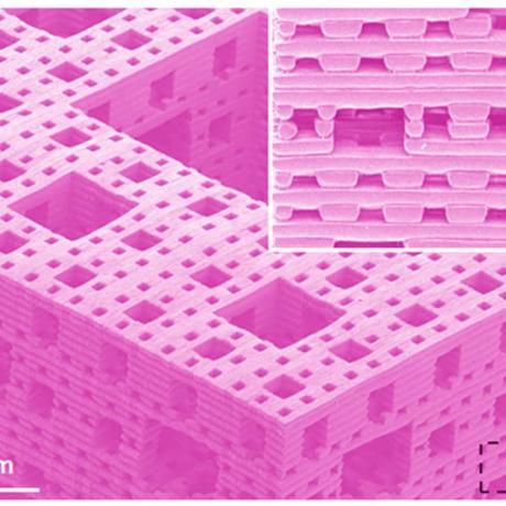 Exemple de biotechnologie 3D : structure fractale