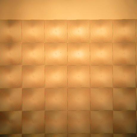 Exemple d'une application à niveaux de gris : zoom sur réseau carré de microlentilles