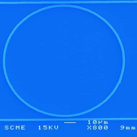Exemple de dispositif photonique : microanneau