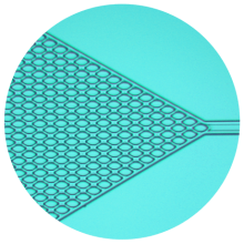 Example of microfluidics device